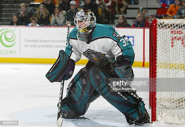 Goalie Ilya Bryzgalov of the Cincinnati Mighty Ducks stands on the goal crease as he follows the action during a American Hockey League game against...