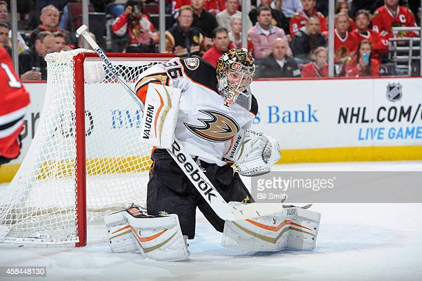 Goalie John Gibson of the Anaheim Ducks guards the net against the Chicago Blackhawks during the NHL game on October 28 2014 at the United Center in...
