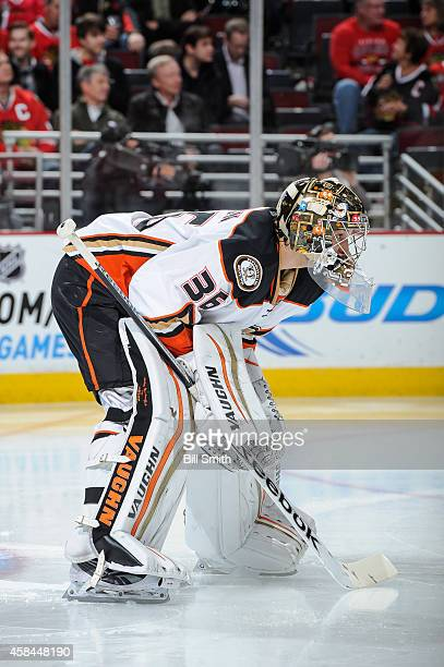 Goalie John Gibson of the Anaheim Ducks guards the net during the NHL game against the Chicago Blackhawks on October 28 2014 at the United Center in...