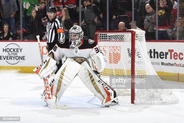 Goalie John Gibson of the Anaheim Ducks guards the net in the third period against the Chicago Blackhawks at the United Center on February 15 2018 in...