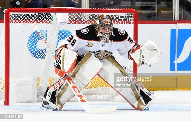 Goalie John Gibson of the Anaheim Ducks in net during third period action against the Arizona Coyotes at Gila River Arena on October 6 2018 in...