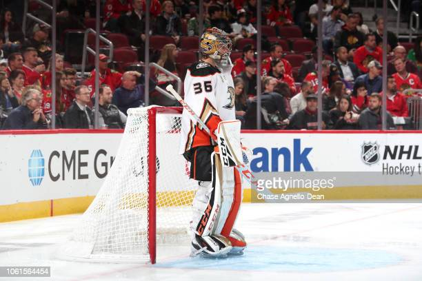 Goalie John Gibson of the Anaheim Ducks stands in front of the net in the second period against the Chicago Blackhawks at the United Center on...