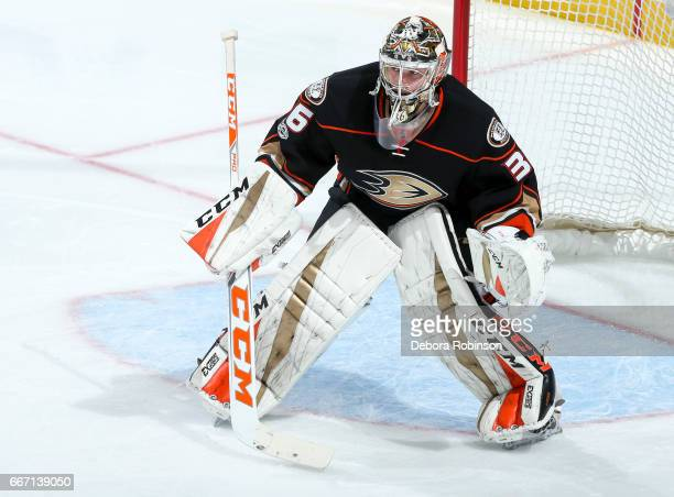 Goalie John Gibson of the Anaheim Ducks tends net during the second period of the game against the Chicago Blackhawks at Honda Center on April 6 2017...