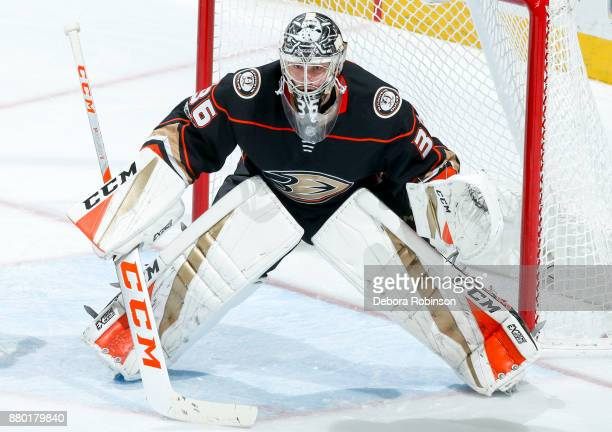 Goalie John Gibson of the Anaheim Ducks tends net during the second period of the game against the Vegas Golden Knights at Honda Center on November...