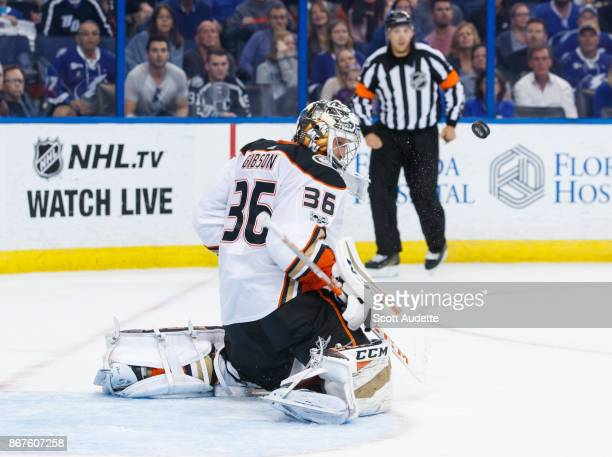 Goalie John Gibson of the Anaheim Ducks watches a the puck against the Tampa Bay Lightning during the first period at Amalie Arena on October 28 2017...