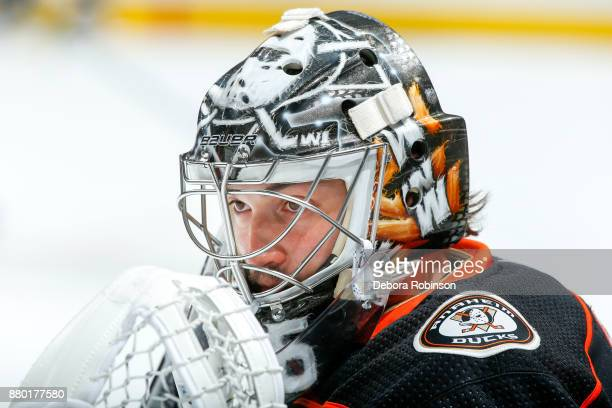 Goalie John Gibson of the Anaheim Ducks watches warmup before the game against the Vegas Golden Knights at Honda Center on November 22 2017 in...
