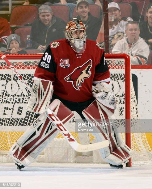 Goalie Marek Langhamer of the Arizona Coyotes stands ready in goal during third period action against the Anaheim Ducks at Gila River Arena on...