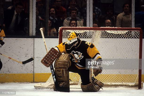 Goalie Michel Dion of the Pittsburgh Penguins defends the net during an NHL game against the New York Islanders in January 1982 at the Nassau...