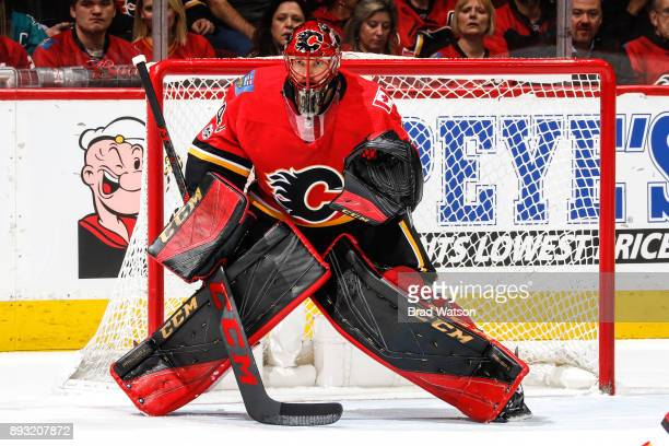 Goalie Mike Smith of the Calgary Flames guards the net in a game against the San Jose Sharks at the Scotiabank Saddledome on Saturday night