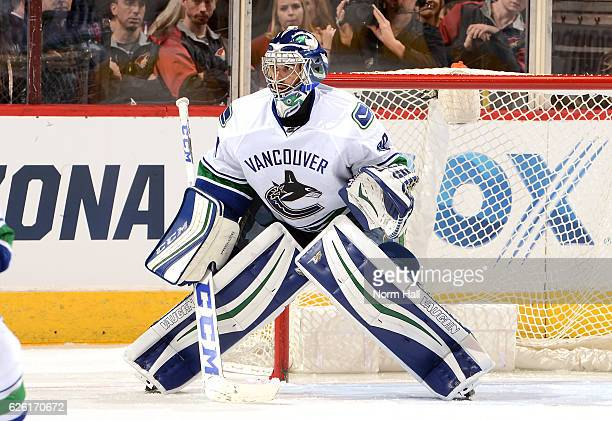 Goalie Ryan Miller of the Vancouver Canucks gets ready to make a save against the Arizona Coyotes at Gila River Arena on November 23 2016 in Glendale...