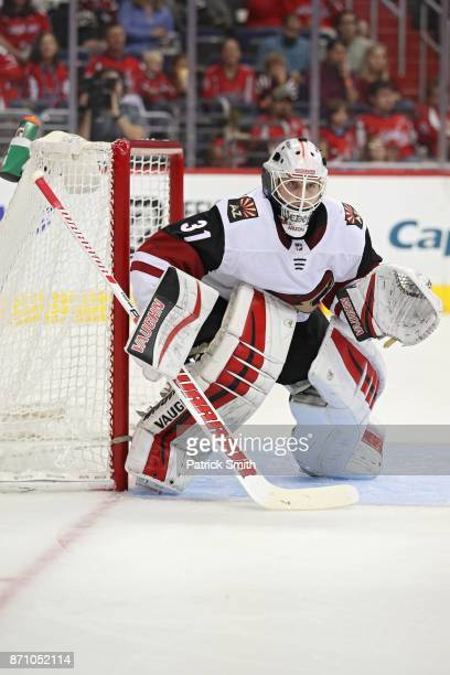 Goalie Scott Wedgewood of the Arizona Coyotes tends the net against the Washington Capitals during the second period at Capital One Arena on November...