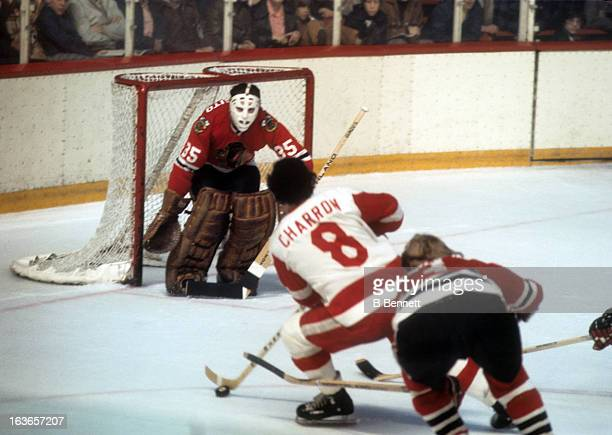 Goalie Tony Esposito of the Chicago Blackhawks defends the net as Guy Charron of the Detroit Red Wings looks to shoot on March 30 1974 at the Detroit...