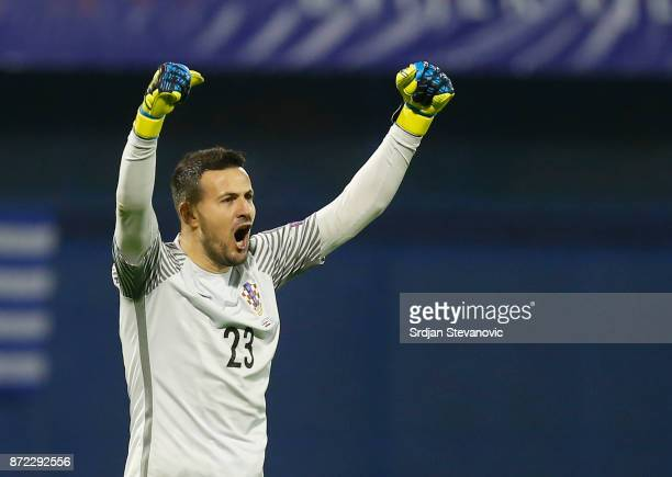 Goalkeeper Danijel Subasic of Croatia during the FIFA 2018 World Cup Qualifier PlayOff First Leg between Croatia and Greece at Stadion Maksimir on...