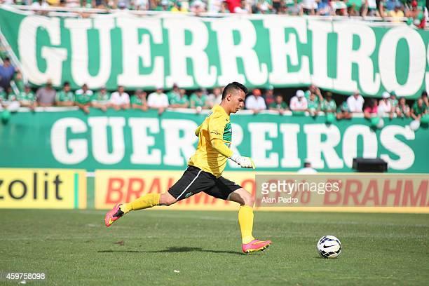 Goalkeeper Danilo of Chapecoense during a match between Chapecoense and Cruzeiro for the Brazilian Series A 2014 at Arena Conda Stadium on November...