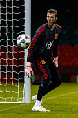 cardiff wales goalkeeper david de gea