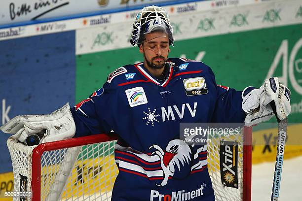 Goalkeeper Dennis Endras of Mannheim reacts during the DEL match between Adler Mannheim and Straubing Tigers at SAP Arena on January 26 2016 in...