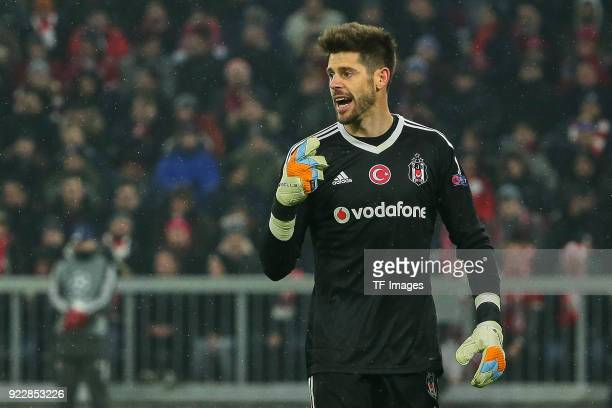 Goalkeeper Fabri of Besiktas Istanbul gestures during the UEFA Champions League Round of 16 First Leg match between Bayern Muenchen and Besiktas at...