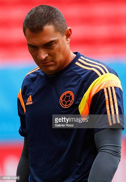 Goalkeeper Faryd Mondragon of Colombia during the training session ahead of the Group C match between Colombia and Cote D'Ivoire as part of FIFA...