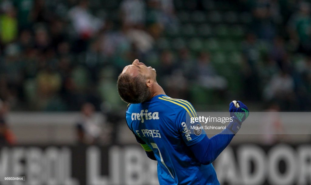 Goalkeeper Fernando Prass of Palmeiras of Brazil celebrates after defending the penalty shot of Jarlan Barrera of Junior Barranquilla of Colombia during the match for the Copa CONMEBOL Libertadores 2018 at Allianz Parque Stadium on May 16, 2018 in Sao Paulo, Brazil.