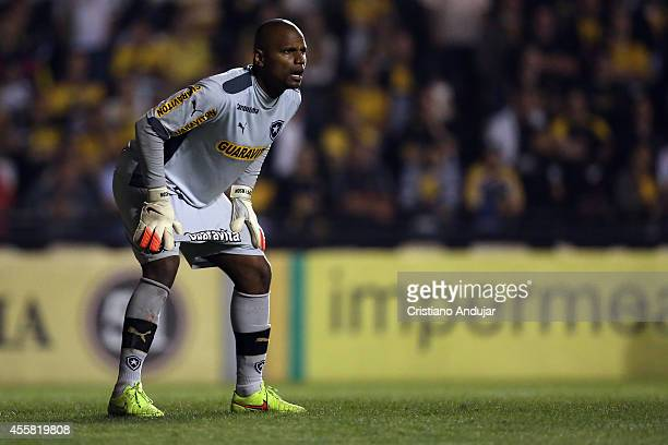 Goalkeeper Jefferson of Botafogo waiting for the free kick during a match between Criciuma and Botafogo as part of Campeonato Brasileiro 2014 at...