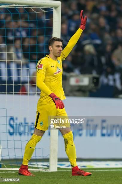 Goalkeeper Jiri Pavlenka of Bremen gestures during the Bundesliga match between FC Schalke 04 and SV Werder Bremen at VeltinsArena on February 3 2018...