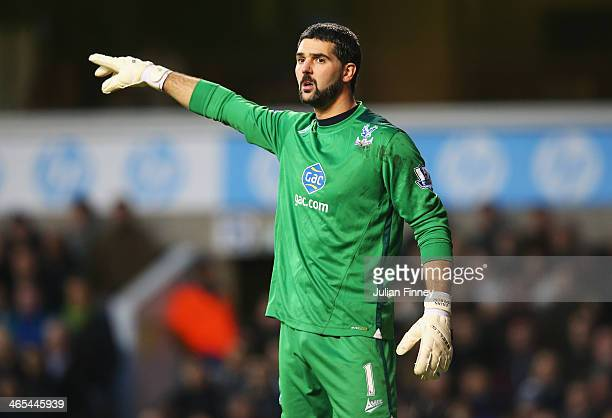 Goalkeeper Julian Speroni of Crystal Palace gives instructions during the Barclays Premier League match between Tottenham Hotspur and Crystal Palace...