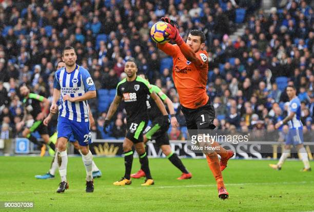 Goalkeeper Mathew Ryan of Brighton and Hove Albion gathers the ball during the Premier League match between Brighton and Hove Albion and AFC...
