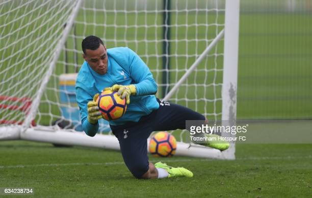 Goalkeeper Michel Vorm in action during the Tottenham Hotspur Training Session on February 8 2017 in Enfield England