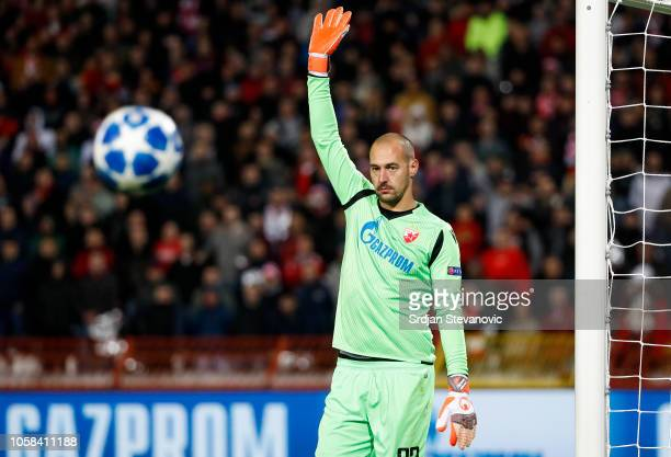 Goalkeeper Milan Borjan of Crvena Zvezda in action during the Group C match of the UEFA Champions League between Red Star Belgrade and Liverpool at...