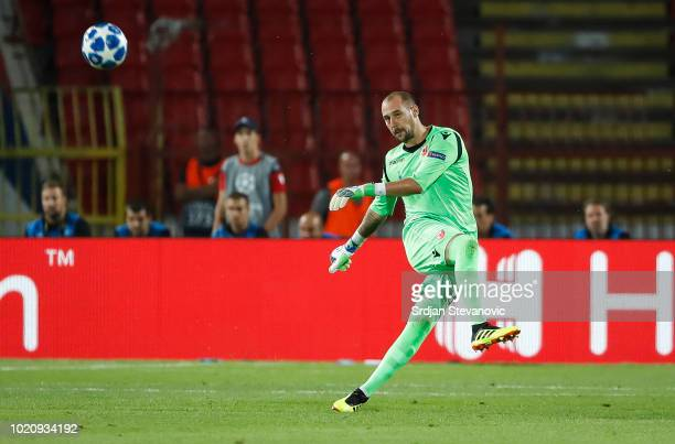Goalkeeper Milan Borjan of Crvena Zvezda in action during the UEFA Champions League Play Off First Leg match between FK Crvema Zvezda and FC Red Bull...