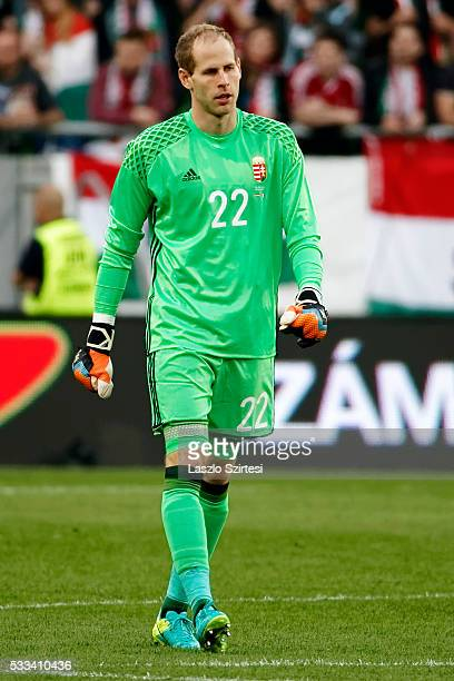 Goalkeeper Peter Gulacsi of Hungary walks to his post back during the International Friendly match between Hungary and Ivory Coast at Groupama Arena...