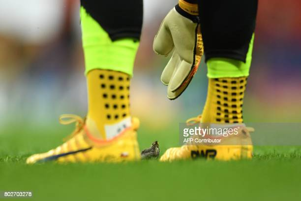 TOPSHOT A goalkeeper reaches down to a fledgeling on the pitch prior to the 2017 Confederations Cup semifinal football match between Portugal and...