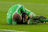 amsterdam netherlands goalkeeper robin olsen sweden