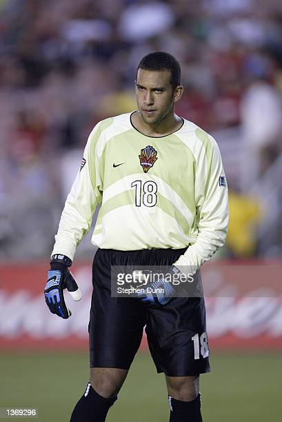Goalkeeper Tim Howard of the New York/New Jersey MetroStars walks on the pitch during the MLS game against the Los Angeles Galaxy on August 31, 2002...