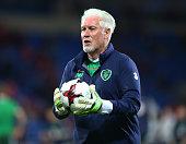 goalkeeping coach seamus mcdonagh republic ireland