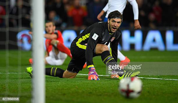 Goalkepeer Vladimir Stojkovic of Serbia watches the attempt on goal of Gareth Bale of Wales hit the post during the FIFA 2018 World Cup Qualifier...