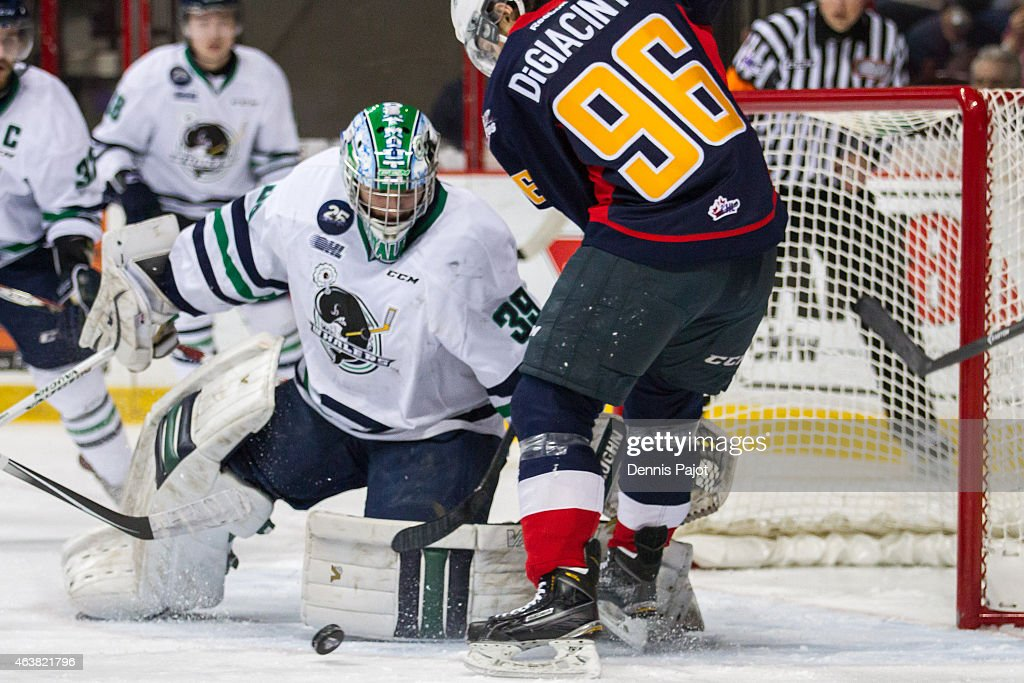 Goaltender Alex Nedeljkovic #39 of the Plymouth Whalers battles for the puck against forward Cristiano DiGiacinto #96 of the Windsor Spitfires on February 18, 2015 at the WFCU Centre in Windsor, Ontario, Canada.