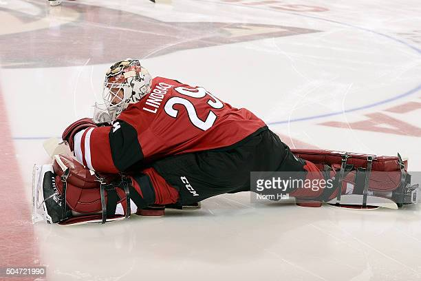 Goaltender Anders Lindback of the Arizona Coyotes stretches before the start of a hockey game against the Edmonton Oilers at Gila River Arena on...