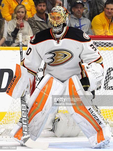 Goaltender Anton Khudobin of the Anaheim Ducks plays in the game against the Nashville Predators at Bridgestone Arena on November 17 2015 in...