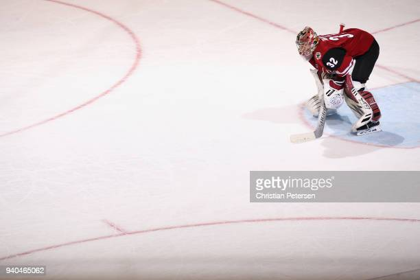 Goaltender Antti Raanta of the Arizona Coyotes looks down ice during the second period of the NHL game against the St Louis Blues at Gila River Arena...