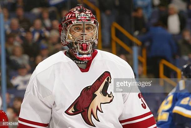 Goaltender Curtis Joseph of the Phoenix Coyotes looks on during the game against the St Louis Blues on January 26 2006 at the Savvis Center in St...