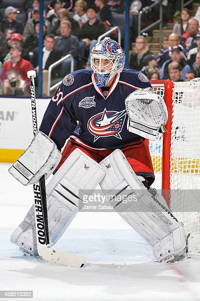 Goaltender Curtis McElhinney of the Columbus Blue Jackets defends the net against the Carolina Hurricanes on November 4 2014 at Nationwide Arena in...