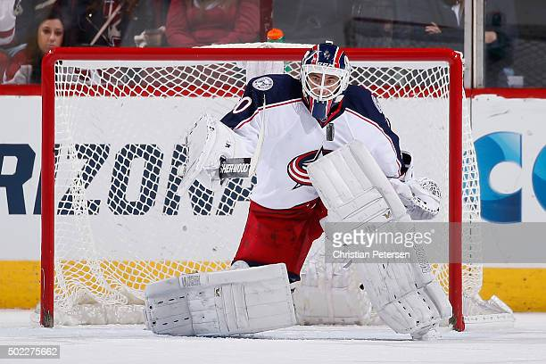 Goaltender Curtis McElhinney of the Columbus Blue Jackets in action during the NHL game against the Arizona Coyotes at Gila River Arena on December...