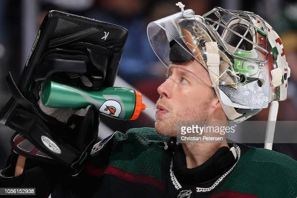 Goaltender Derek Stepan of the Arizona Coyotes drinks from a gatorade bottle during the NHL game against the Tampa Bay Lightning at Gila River Arena...
