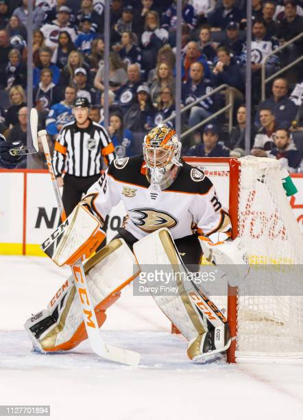 Goaltender John Gibson of the Anaheim Ducks guards the net during first period action against the Winnipeg Jets at the Bell MTS Place on February 2...