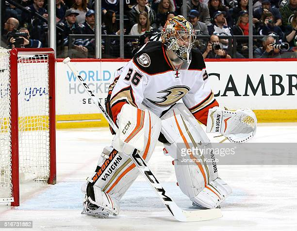 Goaltender John Gibson of the Anaheim Ducks guards the net during second period action against the Winnipeg Jets at the MTS Centre on March 20 2016...