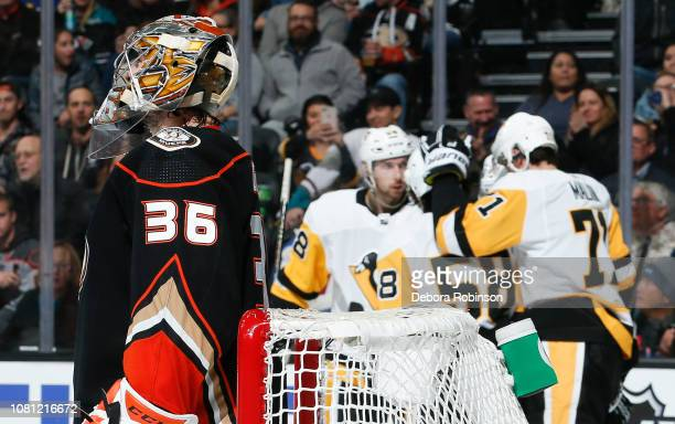Goaltender John Gibson of the Anaheim Ducks reacts as the Pittsburgh Penguins celebrate a secondperiod goal by Evgeni Malkin during the game at Honda...