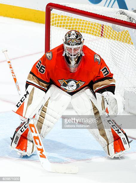 Goaltender John Gibson of the Anaheim Ducks stands in the crease during the game against the Los Angeles Kings at Honda Center on November 20 2016 in...