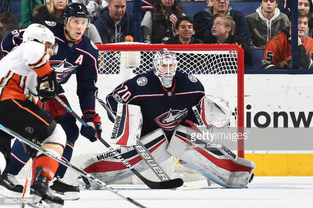 Goaltender Joonas Korpisalo of the Columbus Blue Jackets defends the net against the Anaheim Ducks on December 1 2017 at Nationwide Arena in Columbus...