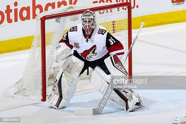 Goaltender Louis Domingue of the Arizona Coyotes guards the net during third period action against the Winnipeg Jets at the MTS Centre on January 18...